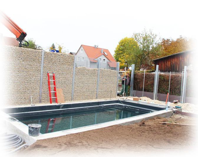 Hervorragend Zaungabione Als Sichtschutz Vor Pool   Noch Nicht Fertig